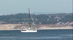 Sailboat in Monterey Bay Stock Footage