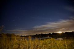 Salt water marsh under stars and moon Stock Photos