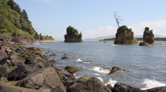 Tillamook Bay in Garibaldi Oregon Rocky Beach at Lowtide 1080p Stock Footage
