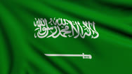 Stock Video Footage of Flag of Saudi Arabia looping