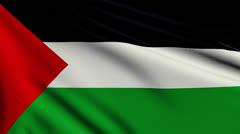 Flag of Palestine looping Stock Footage