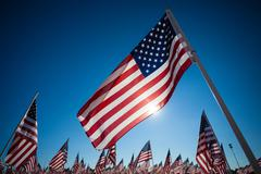 a dispaly of american flags with a sky background - stock photo