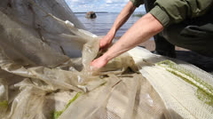 Icthyological works. person sorts a catch from a trawl net Stock Footage