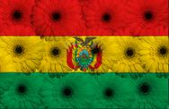 Stock Illustration of stylized  national flag of bolivia    with gerbera flowers