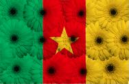 Stock Illustration of stylized  national flag of cameroon    with gerbera flowers