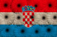 Stock Illustration of stylized  national flag of croatia    with gerbera flowers