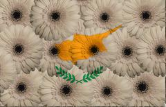 stylized  national flag of cyprus    with gerbera flowers - stock illustration