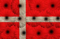 Stock Illustration of stylized  national flag of denmark    with gerbera flowers