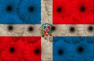 Stock Illustration of stylized  national flag of dominican    with gerbera flowers