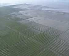 Aerial view square patterns of land reclamation in tidal marsh Stock Footage
