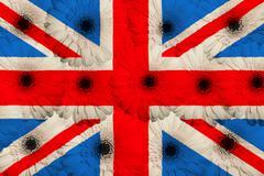 Stock Illustration of stylized  national flag of united kingdom    with gerbera flowers