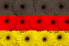 Stylized  national flag of germany    with gerbera flowers Stock Illustration
