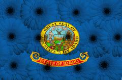 Stock Illustration of stylized  flag of american state of idaho    with gerbera flowers