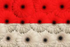 Stock Illustration of stylized  national flag of indonesia    with gerbera flowers