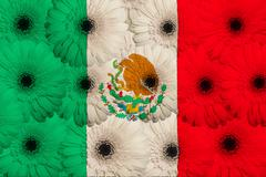 Stylized  national flag of mexico    with gerbera flowers Stock Illustration