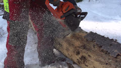 SLOW MOTION: Lumberjack cutting a tree trunk Stock Footage