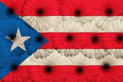 Stock Illustration of stylized  national flag of puertorico    with gerbera flowers