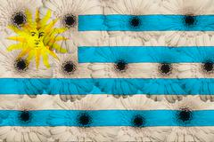 stylized  national flag of uruguay    with gerbera flowers - stock illustration