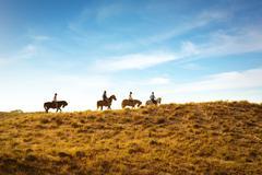 Horseback riding Stock Photos
