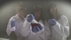 Lab girls 2 Stock Footage