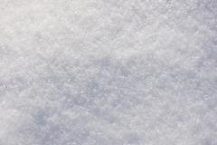 fresh snow - stock photo