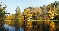 autumn on old overgrown pond - stock photo
