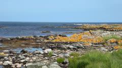 Rocky beach at Bornholm, Denmark Stock Footage