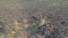 Closeup turn view agricultural plowed field ground soil evening Stock Footage