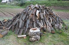 Log pile Stock Photos