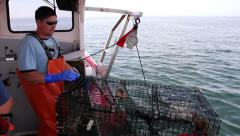 Lobsterman Pulls Two Lobster Traps From The Ocean, Maine Stock Footage