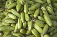 Stock Photo of bilimbi