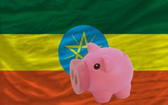piggy rich bank and  national flag of ethiopia - stock photo