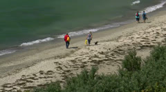 Tourists with Dogs at Ahrenshoop Beach - Baltic Sea, Northern Germany Stock Footage