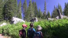 Children watching a chipmunk Stock Footage
