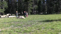 Child butterfly hunters, Stock Footage