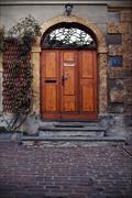 Stock Photo of brown door and grate  in  bellinzona