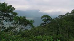 Brazilian Jungle Stock Footage
