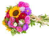 Stock Photo of autumn flowers  bouquet