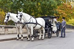 Horse carriage with old fashioned dressed couple in love Stock Photos