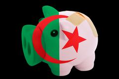 bankrupt piggy rich bank in colors of national flag of algeria    closed with - stock photo