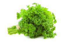 bunch of fresh parsley /  isolated on white - stock photo