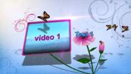 Stock After Effects of flower blossom HD