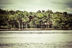 Stock Photo of waterfall and the lagoon of canaima national park - venezuela