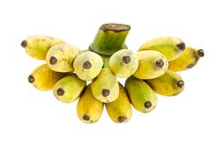 Bunch of cultivated banana Stock Photos