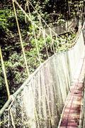 suspension bridge to mangrove tropical forest. - stock photo