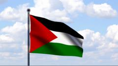 Animated Flag of Palestinian Territories Stock Footage