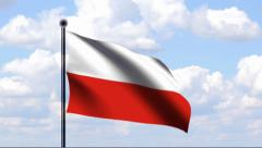 Animated Flag of Poland Stock Footage