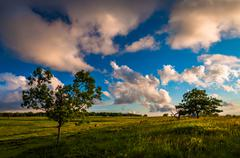 Stock Photo of evening clouds over trees in big meadows, shenandoah national park, va.