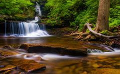 ozone falls, at rickett's glen state park, pennsylvania. - stock photo