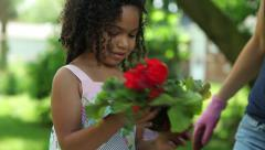 Biracial Mixed Girl Helps Planting Flowers Backyard Garden Gardening - stock footage